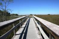Everglades National Park, Florida