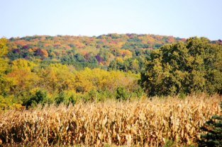 Kettle Moraine Forest, Wisconsin