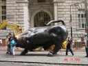 Bull of Wall Street, Manhattan, New York City, New York