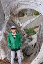 Deadwood, Monterey, California