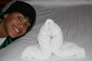 NCL Jewel, Norwegian Cruise Line, Towel Animal