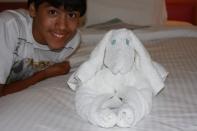 Norwegian Cruise Lines, NCL Jewel, Towel Animal