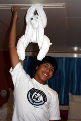 Towel Animal, Independence of the Seas, Royal Caribbean Cruise Lines