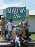 Mauna Loa Nut Factory, Hilo, Hawaii