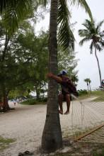 Coco Cay, RCCI Private Island