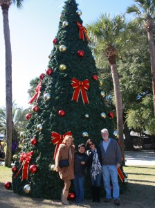 Harbor Town Christmas Tree
